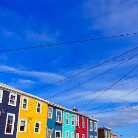 Row Houses of Downtown St. John's by Bill McDonald - City,  Street & Park  Neighborhoods