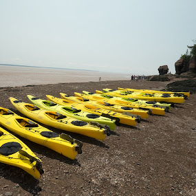 Prepare to Kayak by Alan Cline - Transportation Boats ( tides, canada, bay of fundy, kayaks, parks, beach, rocks )