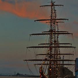 Docked by Anna Tripodi - Transportation Boats ( lights, docked, ship )