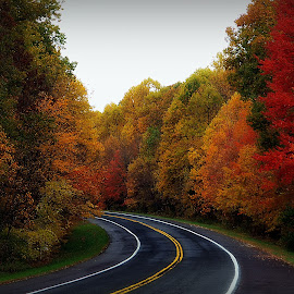 Around the Bend by Kenneth Cox - Transportation Roads ( fall colors, autumn leaves, autumn, road, autumn colors,  )