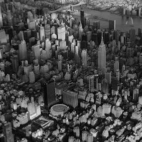 Manhattan by VAM Photography - Black & White Buildings & Architecture ( b&w, aerial, manhattan, travel, architecture,  )
