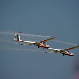 The white wings by Irina Stoica - Transportation Airplanes ( fly, airplane )