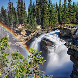 Athabasca Falls by Margie Troyer - Landscapes Waterscapes