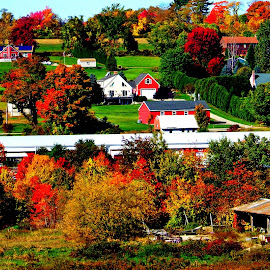 New England Hillside Fall by Marty Stepalavich - Novices Only Landscapes