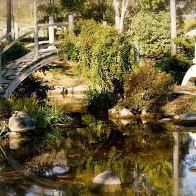 Japanese Garden by Tracy Marie - City,  Street & Park  City Parks