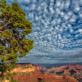 Grand canyon by Stanislav Horacek - Landscapes Mountains & Hills
