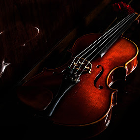 red violin by Darko Kordic - Artistic Objects Musical Instruments