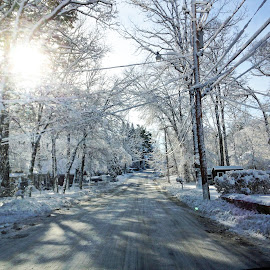 Snowy Country Road by Kristine Nicholas - Novices Only Landscapes ( houses, winter, tree, cold, wires, street, snow, trees, snowy, road, house, landscape, sun )