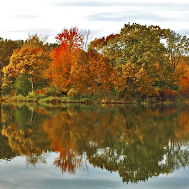 Autumn Reflections by Carolyn Taylor - Instagram & Mobile iPhone