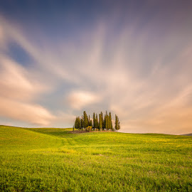 Tuscany by Ryszard Lomnicki - Landscapes Cloud Formations ( tuscany, sunset, trees, longexposure, italy,  )