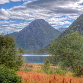 HDR meadows and fields by Benny Høynes - Landscapes Prairies, Meadows & Fields ( hdr, colorful, autumn, sea, norway )