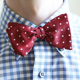 Bowties are Cool by John Smoker - Artistic Objects Clothing & Accessories ( cool, bowtie, check, blue, the dr. )