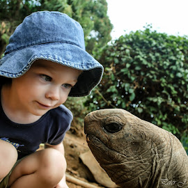My Old Friend by Peter Jerman - Babies & Children Child Portraits ( child, nature, mauritius, turtle )