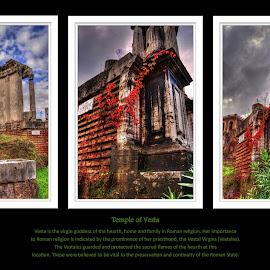 by Darin Williams - Typography Captioned Photos ( temple, roman forum, rome, vine )