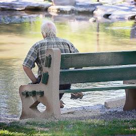 A time to Reflect by Sandra Hilton Wagner - City,  Street & Park  City Parks ( park, bench, summer, elderly, birds, pond, man )