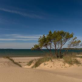 by Bojan Bilas - Landscapes Beaches ( sand, dunes, nature, meripori, suomi, pori, finland, seascape, beach, landscape, baltic )