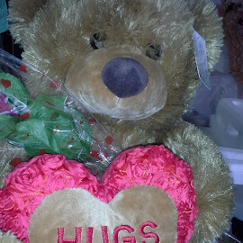 Teddy sending Hugs  by Terry Linton - Artistic Objects Toys