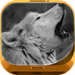 Wolf Wallpapers 1.0.3 Apk