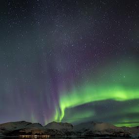 Aurora borealis by Benny Høynes - Landscapes Starscapes ( lights, northern lights, aurora borealis, landscapes, norway )