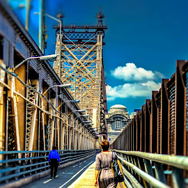 Queensboro bridge by Maks Erlikh - City,  Street & Park  Skylines ( queensboro bridge, ny bridges, east river )