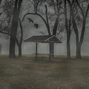 Foggypark.jpg