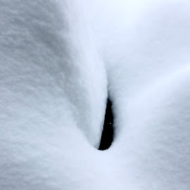 Snow Cover by Leah Zisserson - Landscapes Weather ( abstract, snow, white, landscape, forms )