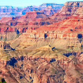 Golden Grand Canyon by Amada Gonzalez - Landscapes Caves & Formations ( cliffs, park, canyon, grand canyon,  )