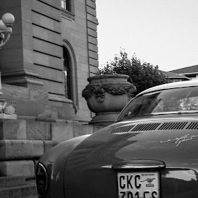 Karmann Ghia Back by Jean Plessis - Transportation Automobiles ( vw, karman ghia, classic car, black and white )