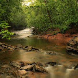 AROUND THE BEND by Dana Johnson - Landscapes Waterscapes ( stream, waterscape, cascade, creek, trees, forest, landscape )