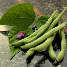 First Harvest of beans by Lakshmi Sharoff - Nature Up Close Gardens & Produce ( bean, beans, gardens, gardening, garden )