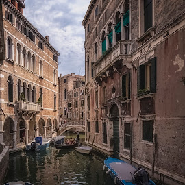 Venice by Ole Steffensen - City,  Street & Park  Neighborhoods ( venezia, gondola, italia, boats, venice, bridge, canal, italy )