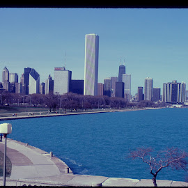 Chicago Lake front by Ruben Garcia Villamil - City,  Street & Park  Skylines