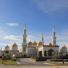 grand mosque by Louie Racosas - Travel Locations Landmarks