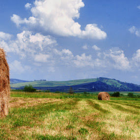 The field by Ionut Stoica - Landscapes Prairies, Meadows & Fields ( field, hdr, landscape )