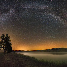 Milky Way panorama by Babus Patrik - Landscapes Starscapes ( milkyway, stars, background, trees, way, landscape, light, milky, foreground, panorama )