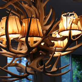 Chandelier by Jeannine Jones - Artistic Objects Furniture