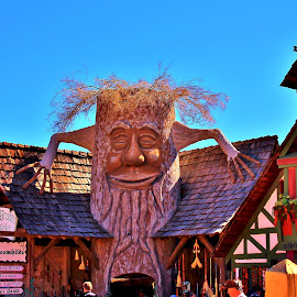 Tree House by Jim Johnston - City,  Street & Park  Markets & Shops