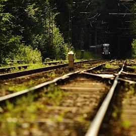 Podkowa Leśna, Poland by Marcin Chmielecki - Transportation Trains