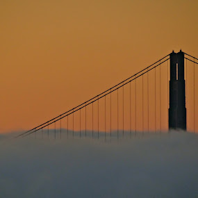Sunset by Jeff Steiner - Buildings & Architecture Bridges & Suspended Structures