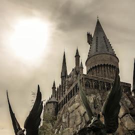 Hogwarts, Hogsmeade by Kathryn McConnell - City,  Street & Park  Amusement Parks ( winter, florida, theme park, universal studios, orlando, tourism, castle, harry potter )