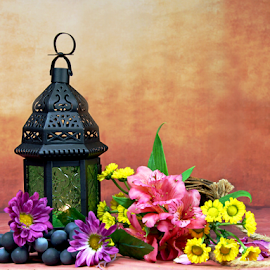 by Dipali S - Artistic Objects Other Objects ( lantern, flora, grapes, still life, flowers )