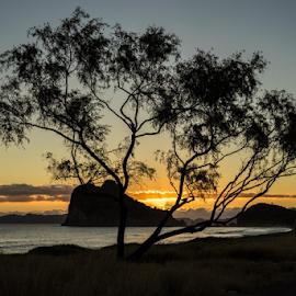 Loreto Bay Sunrise by Vonelle Swanson - Landscapes Sunsets & Sunrises