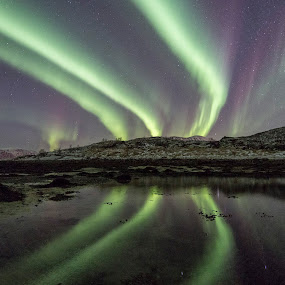 triple auroralines by Benny Høynes - Landscapes Waterscapes ( winter, northernlights, green, aurora, norway )