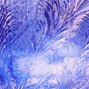 FROZEN by Zoritza  Wejnfalk - Abstract Patterns ( winter, zoritza, frozen, wejnfalk )