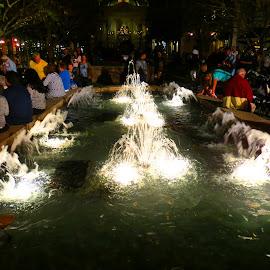 Epcot Fountains by Rita Goebert - City,  Street & Park  Amusement Parks ( night lighting, epcot; disney world; orlando; florida; fountains; )