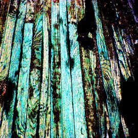 Bridge Floor by Kaye Petersen - Abstract Patterns ( planks, west virginia, aattern, bridge, floor wood, babcock state park,  )