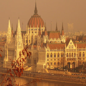 Parliament, Budapest by Gabrielle Phillips - Buildings & Architecture Public & Historical ( hungary, parliament, budapest )