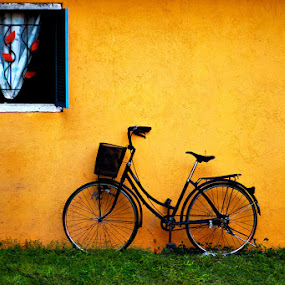 Bike on the Wall by Mark Louie Meru - Artistic Objects Other Objects