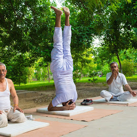 Yoga is the art of living. by Sudipta Deb - Novices Only Sports ( fitness, india, morning, yoga )