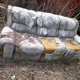 Torn Old Couch by Kasha Newsom - Artistic Objects Furniture ( wisconsin, couch, worn, outdoor, torn furniture )